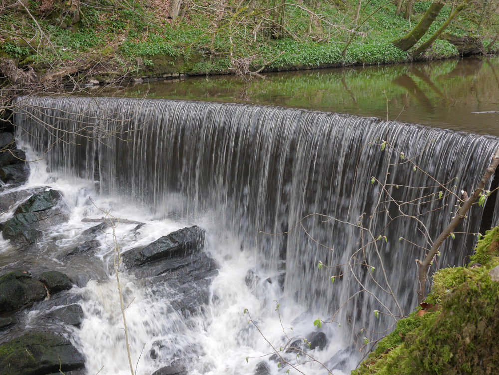 Waterfall in Skipton WOods